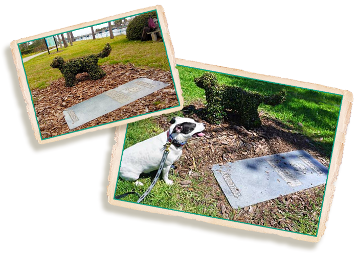 Grave of Brownie, The Town Dog of Daytona Beach